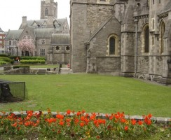 4_St_Patrick_Cathedral.jpg
