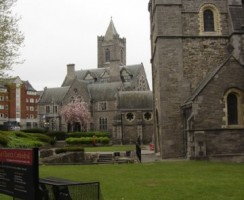 5_St_Patrick_Cathedral.jpg