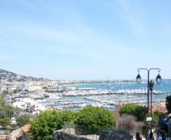 Cannes9850.jpg