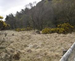 Glendalough10_.jpg
