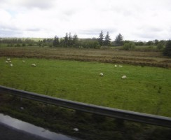 Glendalough28_.jpg