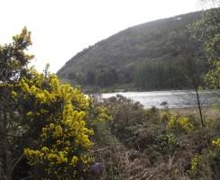 Glendalough2_.jpg