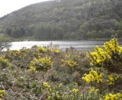Glendalough3_.jpg