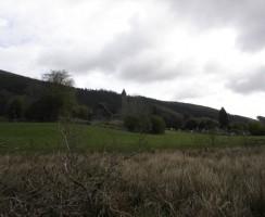 Glendalough8_.jpg